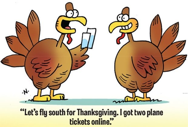 thanksgiving toon